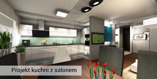 Nowoczesna kuchnia i salon - Wola